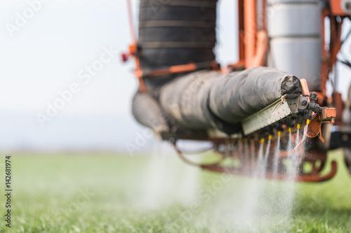Cuadros en Lienzo Tractor spraying pesticide on wheat field with sprayer