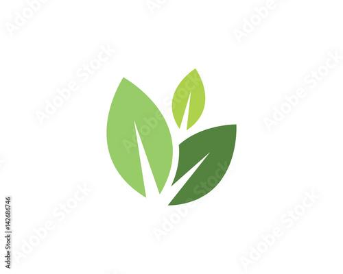 Obraz Eco logo template - fototapety do salonu
