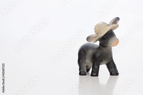 Fotografia  Asinello con cappello contadino