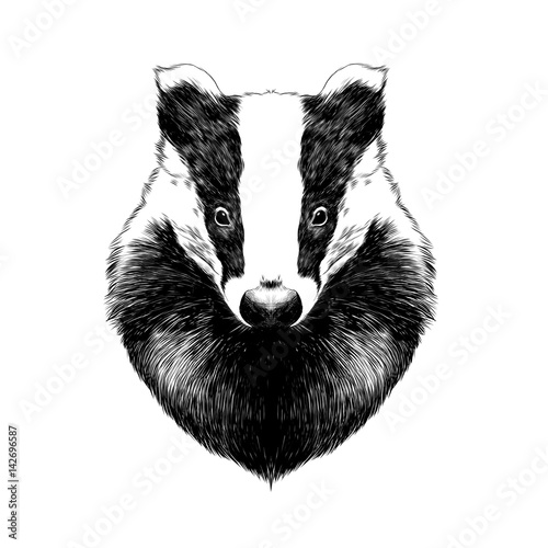 head badger symmetric, sketch vector graphics black and white drawing Wallpaper Mural