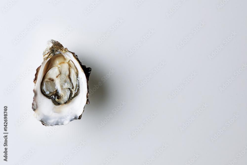 Fototapeta Open oyster on white background