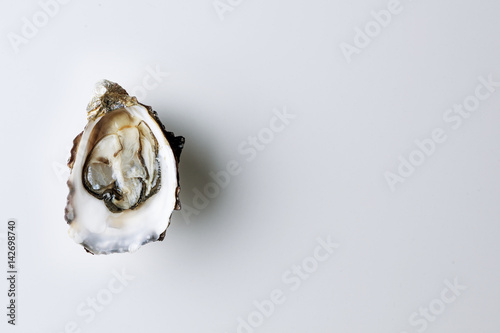 Open oyster on white background