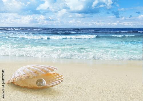 Foto-Leinwand - Pearl in open shell.