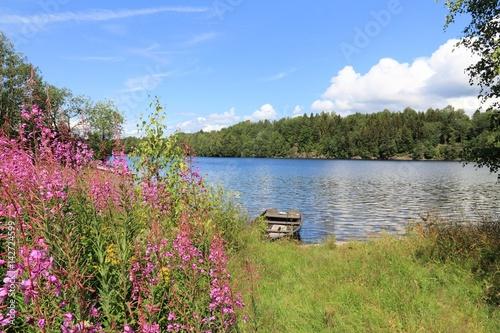 Garden Poster Scandinavia Norway lake - Norsjo. Fireweed flowers.