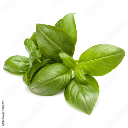 Fotografía  Sweet basil herb leaves bunch isolated on white background