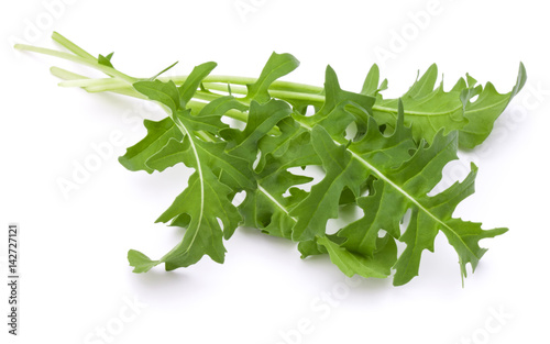 Close up studio shot of green fresh rucola leaves isolated on white background Canvas Print