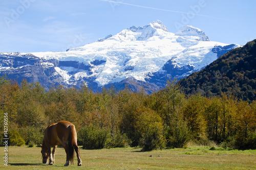 Valokuva  Mount Tronador - Patagonia