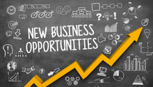 New Business Opportunities / B...