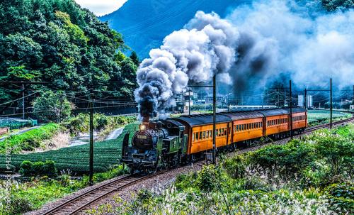 Fotografie, Obraz  日本・静岡県・大井川鐵道・蒸気機関車・トーマス