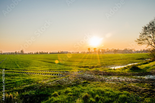 Papiers peints Vignoble sunset in Europe Germany with a green field