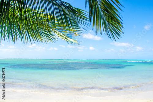 Foto op Plexiglas Caraïben Glück, Freude, Ruhe, Auszeit, Meditation: Traumurlaub an einem einsamen Strand in der Karibik :)