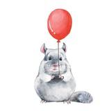 Chinchilla 1. Watercolor birthday card - 142799969