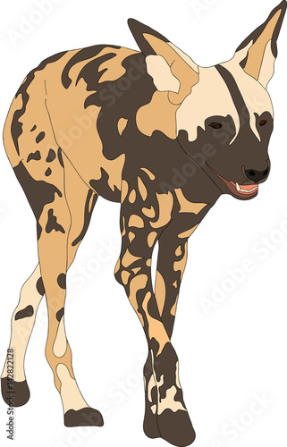 Portrait of a hungry and firerce wild dog, hand drawn vector illustration isolat Canvas Print