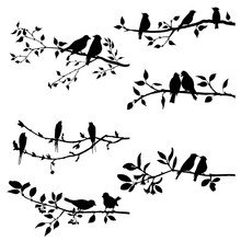 Vector Set Of Birds At Tree Branches Silhouettes