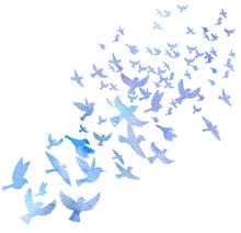 Watercolor Flying Birds Silhou...