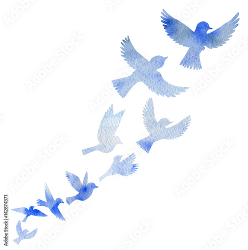 Photo  watercolor flying birds silhouettes