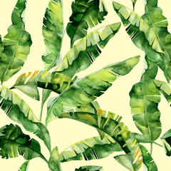Fototapeta Drzewa Seamless watercolor illustration of tropical leaves, dense jungle. Pattern with tropic summertime motif may be used as background texture, wrapping paper, textile,wallpaper design. Banana palm leaves