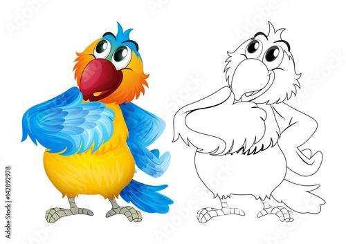 Poster Oiseaux, Abeilles Animal outline for cute parrot