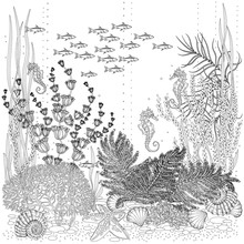 The Flora And Fauna Of The Seabed