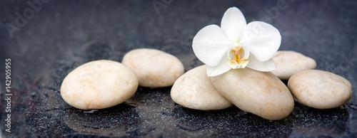 pojedynczy-kwiat-orchidei-i-biale-kamienie