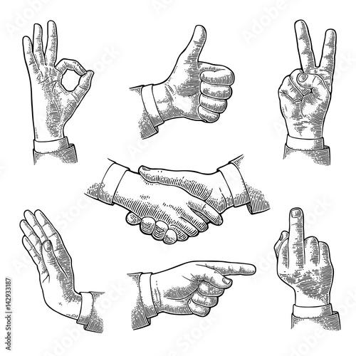 Valokuva  Male Hand sign. Like, Handshake, Ok, Stop, Middle finger, Victory
