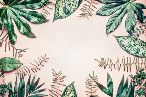Spoed Foto op Canvas Natuur Creative nature frame made of tropical palm and fern leaves on pastel background, top view