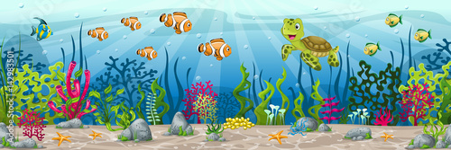 Photo Illustration of an underwater landscape with animals and plants