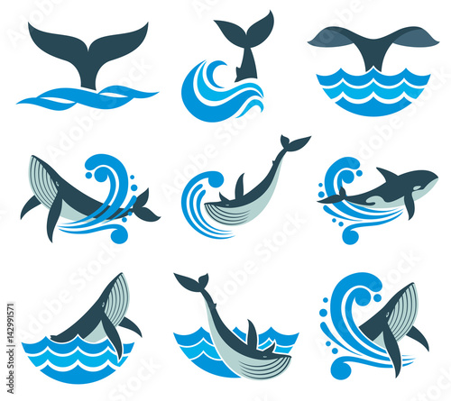 Valokuvatapetti Wild whale in sea waves and water splashes vector icons