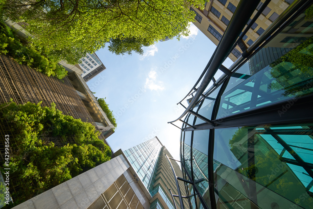Fototapety, obrazy: Low angle shot of modern glass buildings and green with clear sky background.