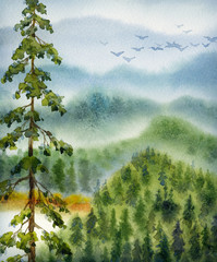 Fototapeta Drzewa Watercolor landscape. Gray clouds over valley forest