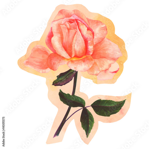 Fotografía  Cutout watercolor rose flower on faded old paper