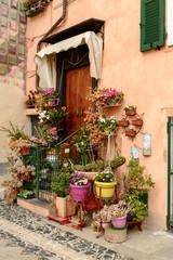 Fototapeta na wymiar blossoming entrance, Finalborgo, Italy