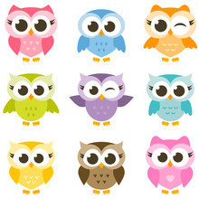 Set Of Cute Colorful Owls Isolated On White Background