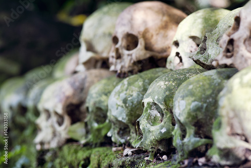 Cleaned skulls stacked under a banyan tree in the cemetery as per anciant Hindu Canvas Print