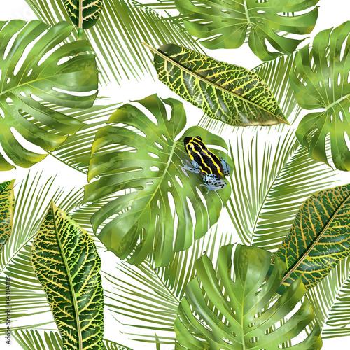 wzor-tropikalny-lisci