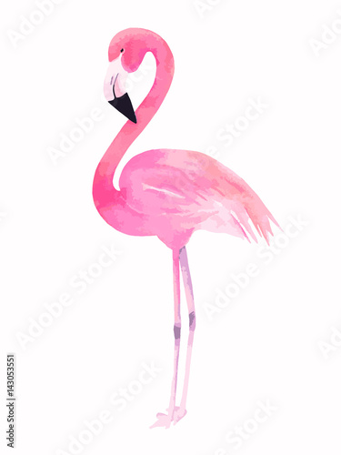 Fényképezés Watercolor pink flamingo. Vector illustration