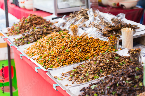 Photo Bug fried sale business Asian Insect Snack food, High Protein from nature