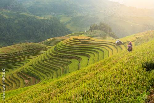 Photo sur Toile Les champs de riz Rice terraces field landscapes beautiful of Mu Cang Chai Yen Bai Vietnam.