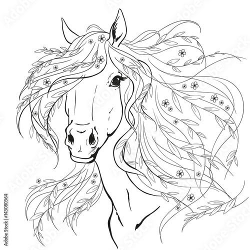 portret-konia-glowa-konia-z-kwiatami-czarne-linie-na-bialym-tle