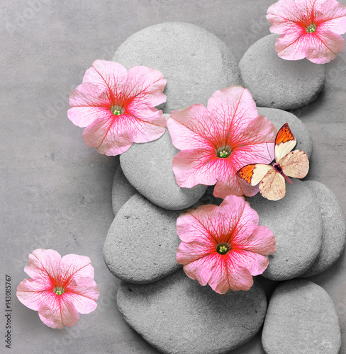 Foto-Fahne - Spa concept with flower, butterfly and zen stones (von Belight)