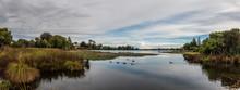 Hamilton Lake Domain, New Zealand