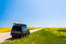 SUV Parked On Side Of Open Road Through Field Of Vibrant Yellow Flowers During Spring In South Dakota