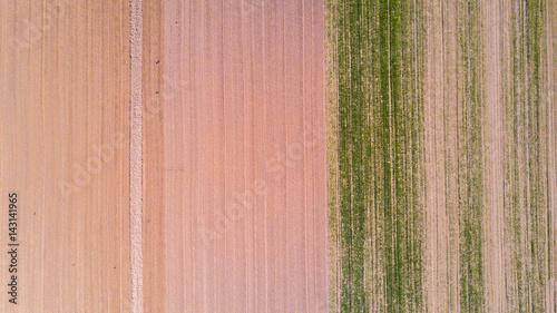 Foto op Plexiglas Groene Natura e paesaggio: vista aerea di un campo, coltivazione, prato verde, campagna, agricoltura,