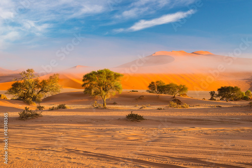 Sand dunes in the Namib desert at dawn, roadtrip in the wonderful Namib Naukluft National Park, travel destination in Namibia, Africa. Morning light, mist and fog.