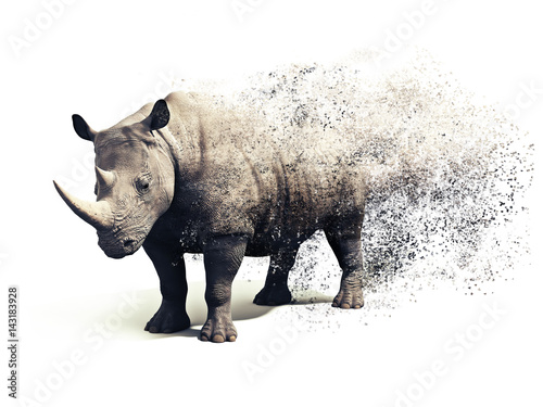Fotografija  Rhinoceros on a white background with a dispersion abstract  effect