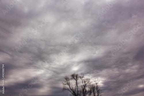 Fotografie, Obraz  Altostratus undulatus clouds before storm