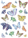 Watercolor pattern with different colorful butterflies.
