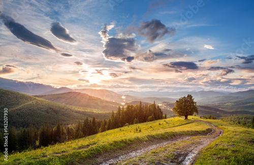 Foto op Canvas Zalm dirt road in the mountains .landscape.