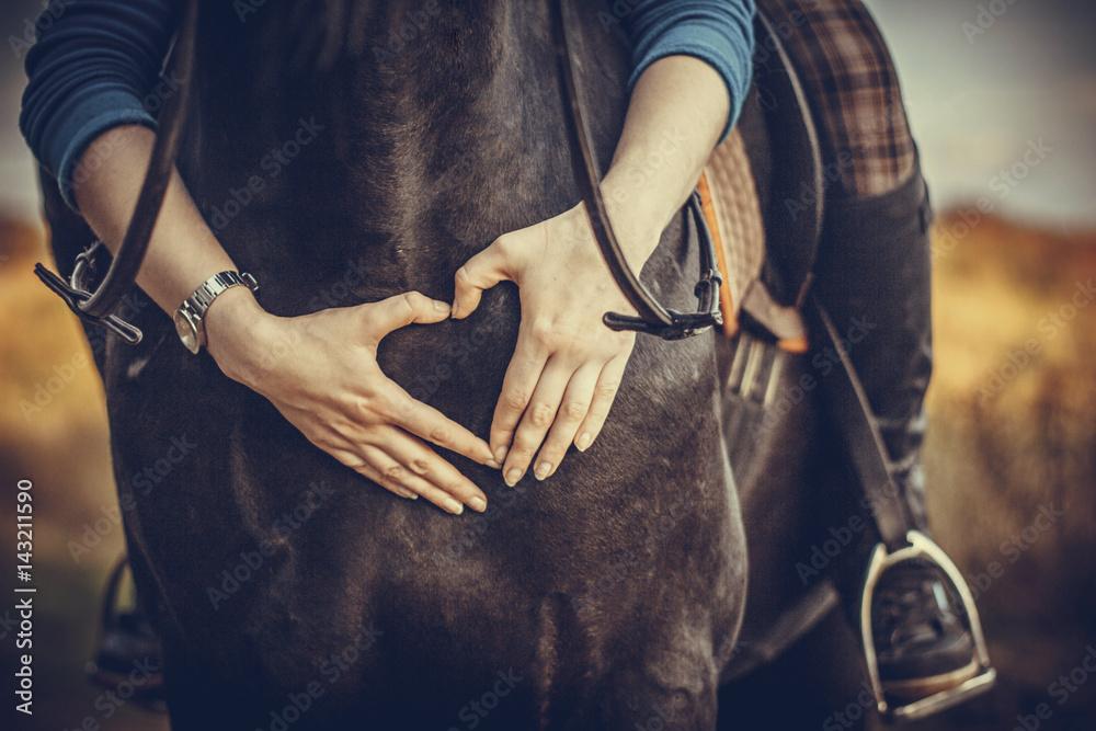 Fototapeta Love of a horse