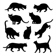 Black Cat Silhouette Vector Ic...